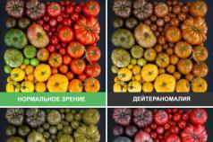 Что представляет собой тест на цветоощущение и как проводится?